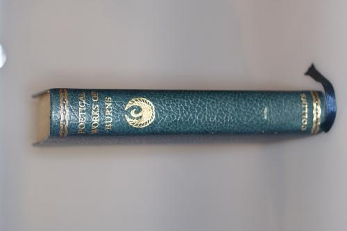 Poetical Works of Robert Burns